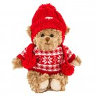Benoit teddy with red knitted  sweater ± 28 cm